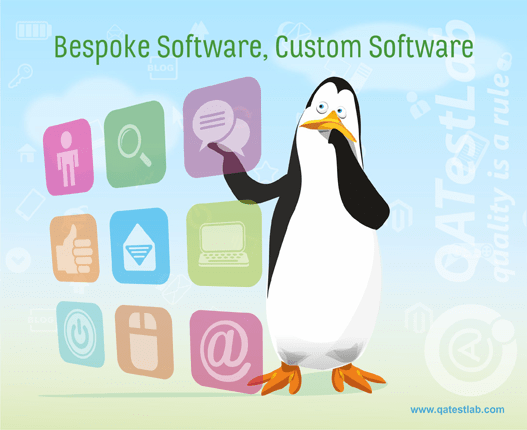 Bespoke Software, Custom Software