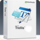 Marblewire Trellis 2011 Training Evaluation Software