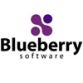 Blueberry Launches Version 3.0 of Its Software Testing Tool for Developers